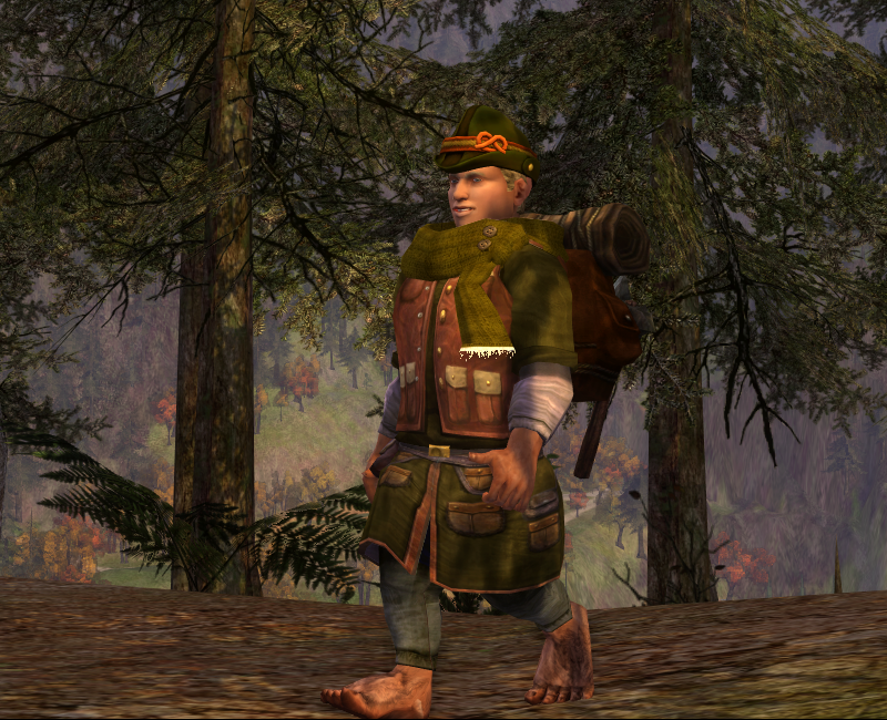 Dude... you're walking the wrong way. Rivendell is down there... /sigh